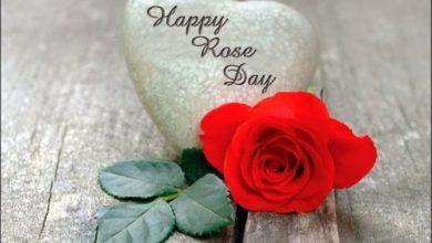 Photo of Rose Day पर इस तरह से खुश करें अपनी GirlFriend को, सुनाइए ये Romantic शायरियां