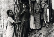 करीब 45 साल पहले चिपको आंदोलन की शुरूआत की गई