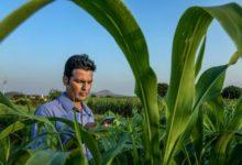 Photo of किसानों को मिलेंगे फसल से सम्बंधित सभी सुझाव, मौसम विभाग ने वॉट्सऐप पर शुरू की ये सेवा