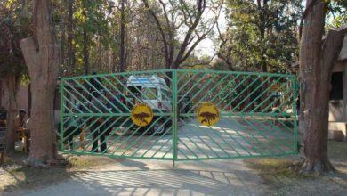 Photo of नेशनल कार्बेट पार्क में आएंगे नए मेहमान, वन्य जीव परिषद की बैठक में हुआ फैसला