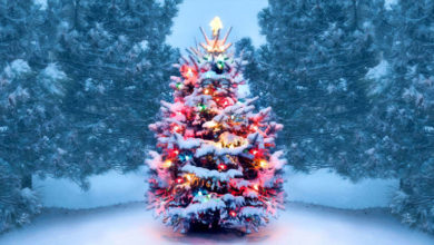 Photo of Christmas Special : जानिए क्रिसमस ट्री का महत्व