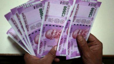 Photo of सिर्फ 10 हजार रुपए लगाकर करें इस बिज़नस की शुरुआत, होगा दोगुना मुनाफा