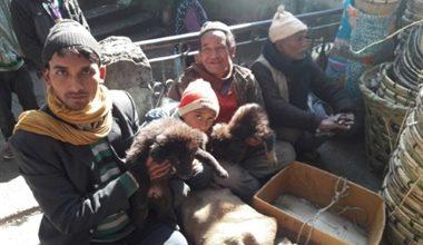 Photo of उत्तरायणी मेले का बरसों से रहता इंतजार, कुत्तों का व्यापार इस मेले की एक विशेषता