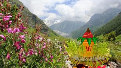 Photo of 16 जुलाई को हरेला पर्व पर सरकारी छुट्टी का ऐलान