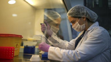 Photo of कोरोना का अंत तय,  भारतीय वैज्ञानिकों को मिली बड़ी सफलता