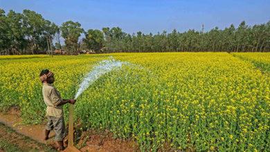 Photo of यूपी:  अब किसानों की पाठशाला भी होगी ऑनलाइन