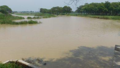 Photo of उत्तर प्रदेश में 17 जिलों के 893 गांवों में बाढ़ का कहर, सीएम योगी ने उठाया बड़ा कदम