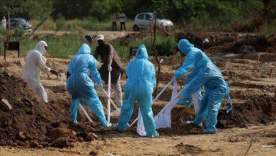 Photo of देश में कोरोना से हुईं एक दिन में 1172 लोगों की मौत, मिले सबसे ज्यादा संक्रमित