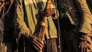 Photo of नाइजर: बंदूकधारियों ने गांव में मचाया कोहराम, तीन घंटे में 137 लोगों की गोली मारकर की हत्या