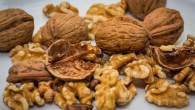 Photo of अखरोट खाने के हैं अनेक फायदे, डायबिटीज और हृदय रोगियों के लिए है सेहत का खजाना