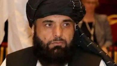 Photo of तालिबान के प्रवक्ता सुहेल शाहीन का दावा, कहा- पाकिस्तान के संगठनों से संबंध नहीं है