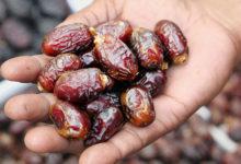 Photo of खजूर खाने से होते हैं कई फायदे, जानिए